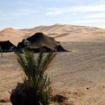 merzuouga desert